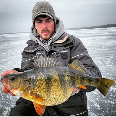Potential Wisconsin State Record Yellow Perch